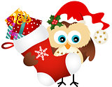 Owl holding Christmas stocking with gifts