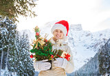 Woman with Christmas tree and gift box in the front of mountains