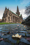 Leaf on cobbles at Glasgow Cathedral, Scotland