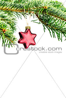 green branch with christmas decoration