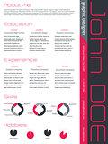Modern curriculum vitae cv resume in pink gray