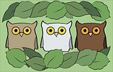 flat illustration with cartoon beautiful and funny owls