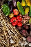 Vegetable in a basket