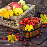 Still life with autumn apples