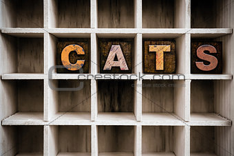 Cats Concept Wooden Letterpress Type in Draw