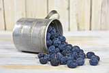 ripe blueberries in tin cup