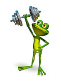 Frog lifts a dumbbell sports