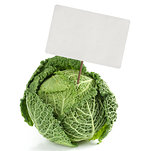 savoy cabbage with price tag