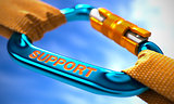 Support on Blue Carabiner between Orange Ropes.