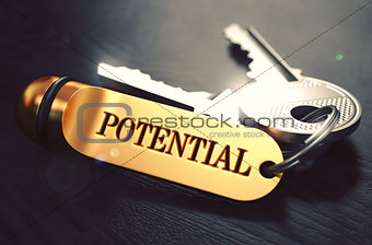 Potential - Bunch of Keys with Text on Golden Keychain.