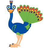 Cartoon of the bird peacock
