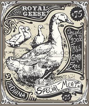 Advertising Goose 01 Vintage 2D