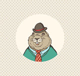 Groundhog in a hat