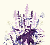 Violet flowers and butterfly
