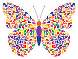 abstract vector butterfly