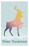 deer in snowy winter night