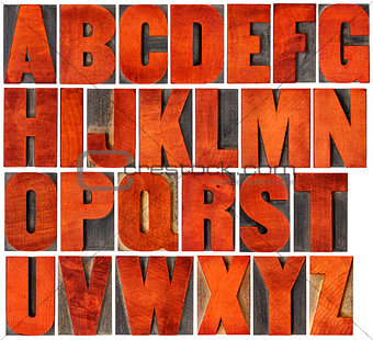alphabet set in letterpress wood type