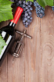 Red grape, wine bottle and vintage corkscrew