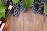 Red grape and wine bottle