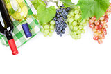 Bunch of red, purple and white grapes and wine