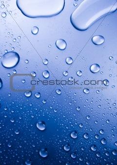 Fresh & Wet