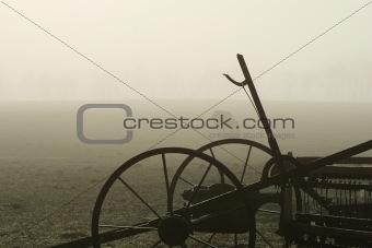 Foggy Bovine 03