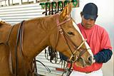 Chris Readies Horse for Polo