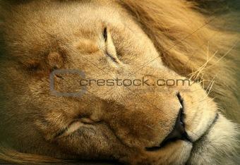 Sleeping king.