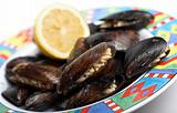 fresh mussels on plate
