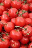 Vine ripe tomato