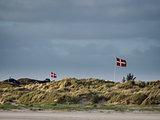Summer houses hiding in the dunes at on Fanoe in Denmark