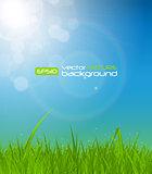 Natural Sunny Background Vector Illustration
