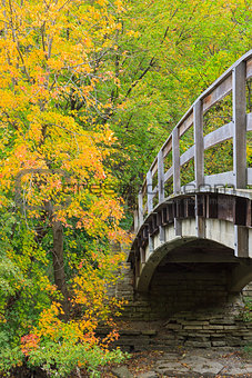 bridge into autumn forest