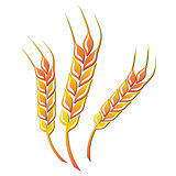 Wheat icon. Vector illustration