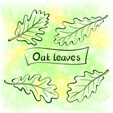 Oak Leaves, Pictogram Set
