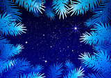 Starry sky in the winter forest. Spruce branches frosty pattern