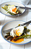 Green asparagus with poached egg