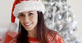 Smiling gorgeous young woman in a Santa hat