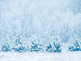 Winter background with snowfall and trees