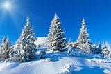 Morning winter mountain landscape (Carpathian, Ukraine).