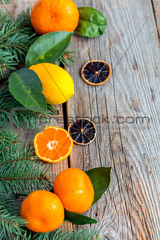 Citrus and spruce branches.