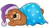 Sleeping bear theme image 1