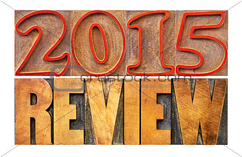 2015 year review banner
