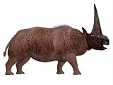 Elasmotherium Side Profile