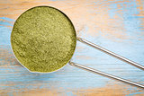 scoop of  wheat grass powder