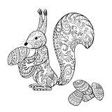 doodle cartoon squirrel and mushrooms