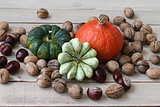 Still life with products of autumn - pumpkins, gourds, nuts, che
