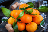 Fresh tangerines on holiday background