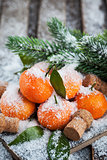 Fresh tangerine on the snow-covered table