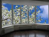 plastic windows overlooking the garden